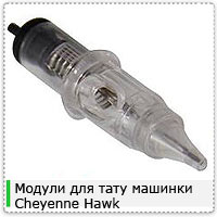 Cheyenne-Hawk-NEEDLESq1